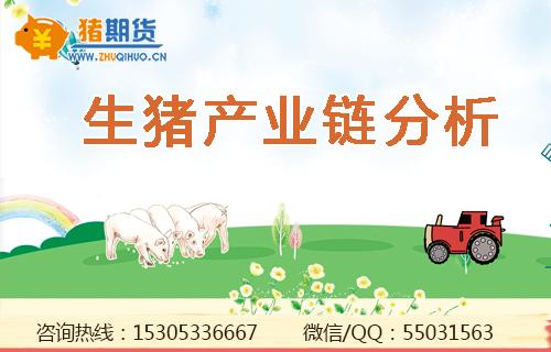 生猪产业链分析.png