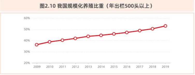 我国规模化养殖比重(年出栏500头以上).png